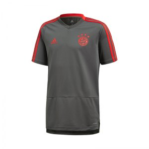 adidas-fc-bayern-muenchen-t-shirt-kids-grau-replica-merchandise-fussball-spieler-teamsport-mannschaft-verein-cw7265.jpg