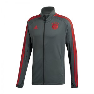 adidas-fc-bayern-muenchen-training-jacket-grau-mia-san-mia-allianz-arena-rekordmeister-cw7289.jpg