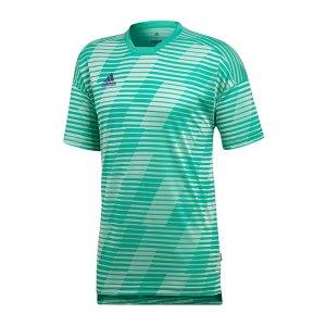 adidas-tango-eng-t-shirt-gruen-weiss-fussballkleidung-kurzarm-shortsleeve-trainingsoutfit-cd9300.png