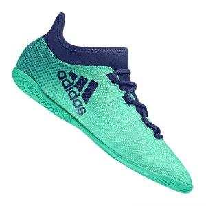 adidas-x-tango-17-3-in-j-kids-halle-gruen-blau-halle-indoor-antrittsstaerke-cp9035.jpg