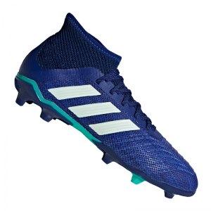 adidas-predator-18-1-fg-j-kids-blau-gruen-fussballschuhe-footballboots-firm-ground-kinder-children-cp8874.jpg