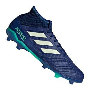 adidas-predator-18-3-fg-blau-gruen-fussballschuhe-footballboots-naturrasen-firm-ground-nocken-soccer-cp9304.jpg