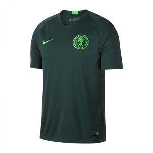 nike-nigeria-trikot-away-wm-2018-gruen-f397-fan-shop-replica-fanbekleidung-fanartikel-893885.jpg
