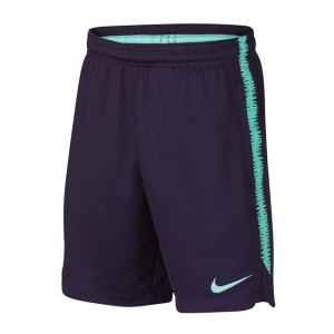 nike-fc-barcelona-dry-squad-short-kids-lila-f524-replica-sportbekleidung-primera-division-fankleidung-894408.jpg