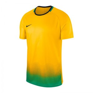 nike-dry-academy-t-shirt-gx-gelb-f728-kurzarm-sportbekleidung-trainingsshirt-men-aj4220.jpg