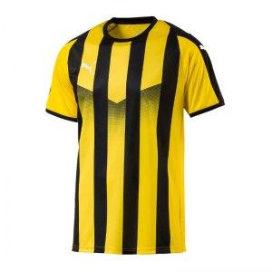 puma-liga-striped-trikot-kurzarm-gelb-schwarz-f07-teamsport-textilien-sport-mannschaft-erwachsene-703424.png