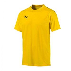 puma-liga-training-t-shirt-gelb-f07-shirt-team-mannschaftssport-ballsportart-training-workout-655308.jpg