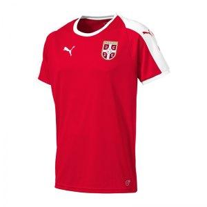 puma-serbien-home-trikot-wm18-rot-f01-fanshop-nationalmannschaft-weltmeisterschaft-jersey-shortsleeve-kurzarm-745921.jpg
