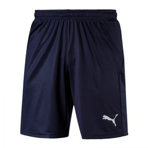puma-liga-core-short-mit-innenslip-dunkelblau-f06-fussball-spieler-teamsport-mannschaft-verein-703615.png