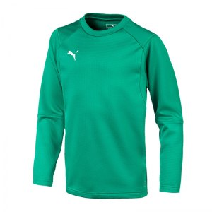 puma-liga-training-sweatshirt-kids-gruen-f05-teampsort-mannschaft-ausruestung-655670.jpg
