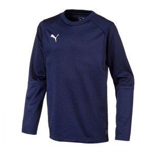 puma-liga-training-sweatshirt-kids-blau-f06-teampsort-mannschaft-ausruestung-655670.jpg