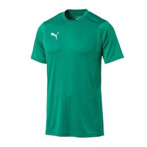 puma-liga-training-t-shirt-gruen-f05-shirt-team-mannschaftssport-ballsportart-training-workout-655308.jpg