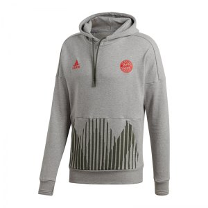 adidas-fc-bayern-muenchen-kapuzensweatshirt-grau-fanshop-replica-mannschaft-jogginghose-hose-lang-cw7331.png