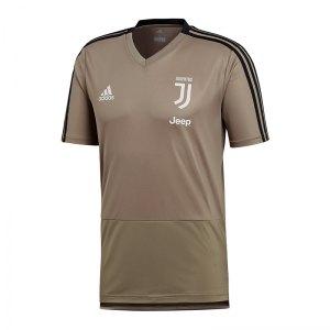 adidas-fc-juventus-turin-trainingshirt-grau-replica-mannschaft-fan-outfit-shirt-oberteil-bekleidung-cw8763.jpg