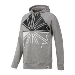 reebok-classics-f-dis-oth-sweatshirt-grau-lifestyle-textilien-sweatshirts-dh2048-pullover-bekleidung-textilien-oberteil.jpg