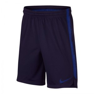 nike-dry-squad-18-short-kids-blau-f416-fussball-teamsport-textil-shorts-textilien-894874.jpg