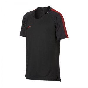 nike-breath-squad-18-top-kurzarm-kids-f060-fussball-teamsport-textil-t-shirts-textilien-916117.jpg