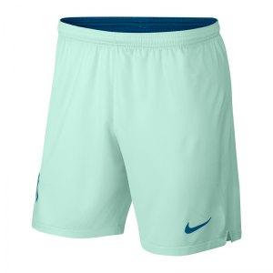 nike-atletico-madrid-short-ucl-2018-2019-gruen-f357-replicas-shorts-international-textilien-940501.jpg