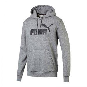 puma-essential-big-logo-kapuzensweatshirt-grau-f03-lifestyle-textilien-sweatshirts-851745.png