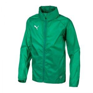 puma-liga-training-rain-jacket-regenjacke-kids-f05-fussball-teamsport-textil-allwetterjacken-655628.png