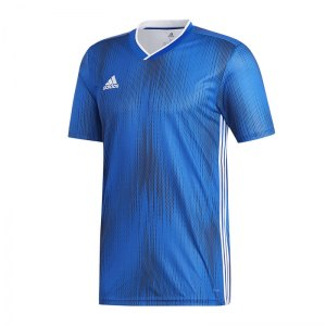 adidas-tiro-19-trikot-kurzarm-blau-weiss-fussball-teamsport-textil-trikots-dp3532.jpg