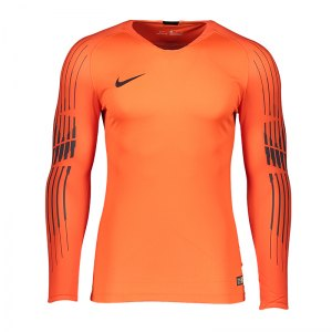 db65f1d18da nike-promo-torwarttrikot-langarm-orange-f817-fussball-teamsport-