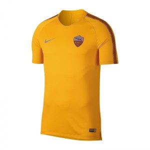 nike-as-rom-breathe-squad-t-shirt-gelb-f739-919960-replicas-t-shirts-international.jpg