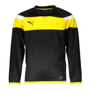 puma-spirit-ii-training-sweatshirt-kids-f37-fussball-teamsport-textil-sweatshirts-654656.png