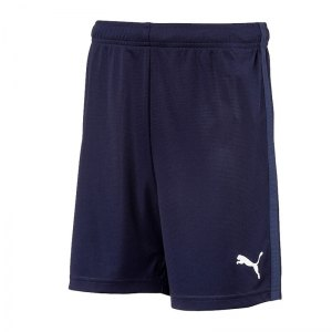 puma-liga-training-core-short-kids-blau-f06-fussball-teamsport-textil-shorts-655665.png