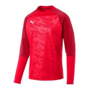 puma-cup-training-core-sweatshirt-rot-f01-fussball-teamsport-textil-sweatshirts-656021.jpg
