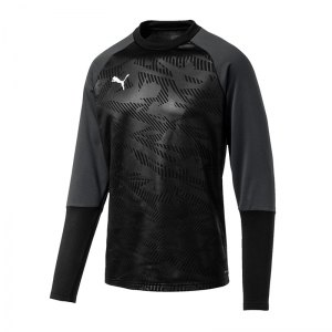 puma-cup-training-core-sweatshirt-schwarz-f03-fussball-teamsport-textil-sweatshirts-656021.png