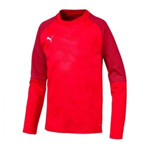 puma-cup-training-core-sweatshirt-kids-rot-f01-fussball-teamsport-textil-sweatshirts-656022.jpg