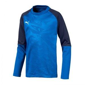 puma-cup-training-core-sweatshirt-kids-blau-f02-fussball-teamsport-textil-sweatshirts-656022.png