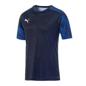 puma-cup-training-t-shirt-blau-f02-fussball-teamsport-textil-t-shirts-656023.jpg