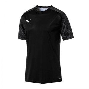 puma-cup-training-t-shirt-schwarz-f03-fussball-teamsport-textil-t-shirts-656023.jpg