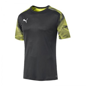 puma-cup-training-t-shirt-grau-f16-fussball-teamsport-textil-t-shirts-656023.jpg