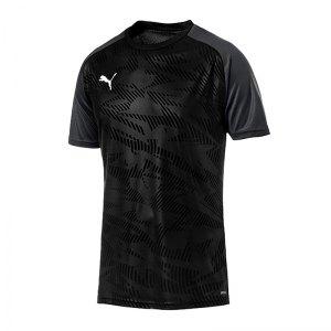 puma-cup-training-core-t-shirt-schwarz-f03-fussball-teamsport-textil-t-shirts-656027.jpg
