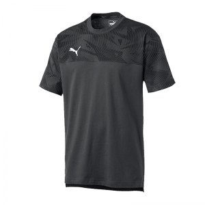 puma-cup-casuals-tee-t-shirt-grau-f37-fussball-teamsport-textil-t-shirts-656038.jpg