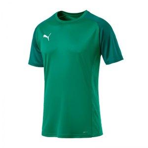 puma-cup-sideline-core-t-shirt-gruen-f05-fussball-teamsport-textil-t-shirts-656051.jpg