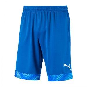 puma-cup-short-blau-weiss-f02-fussball-teamsport-textil-shorts-704034.jpg