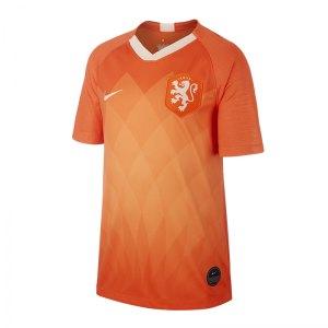 nike-niederlande-trikot-home-kids-2019-orange-f819-replicas-trikots-nationalteams-aj4445.png
