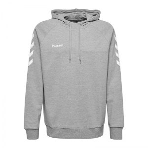 10124711-hummel-cotton-hoody-kids-grau-f2006-203509-fussball-teamsport-textil-sweatshirts.jpg