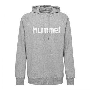 10124747-hummel-cotton-logo-hoody-grau-f2006-203511-fussball-teamsport-textil-sweatshirts.png