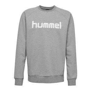 10124773-hummel-cotton-logo-sweatshirt-kids-grau-f2006-203516-fussball-teamsport-textil-sweatshirts.png
