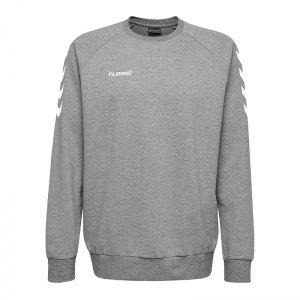 10124824-hummel-cotton-sweatshirt-kids-grau-f2006-203506-fussball-teamsport-textil-sweatshirts.png