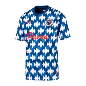 puma-showdown-jersey-blau-weiss-f01-fussball-textilien-t-shirts-656502.jpg