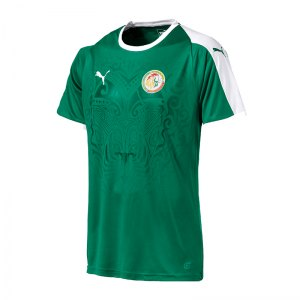 puma-senegal-away-trikot-gruen-f05-replicas-trikots-nationalteams-754927.jpg