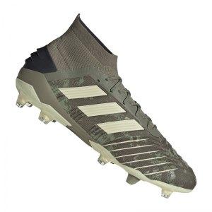 adidas-predator-19-1-fg-gruen-fussball-schuhe-nocken-ef8205.jpg
