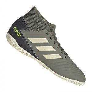 adidas-predator-19-3-in-halle-kids-gruen-fussball-schuhe-kinder-halle-ef8219.jpg
