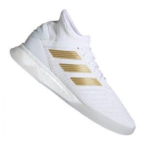 adidas-predator-19-1-tr-weiss-gold-fussball-schuhe-freizeit-f35620.jpg